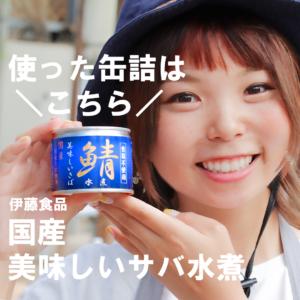 缶詰紹介 伊藤食品美味しいサバ水煮